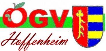 Jahreshauptversammlung Hoffenheim